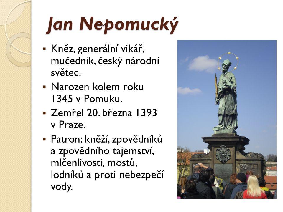 Jan Nepomucký – vzdělání a kariéra  Syn soudce.