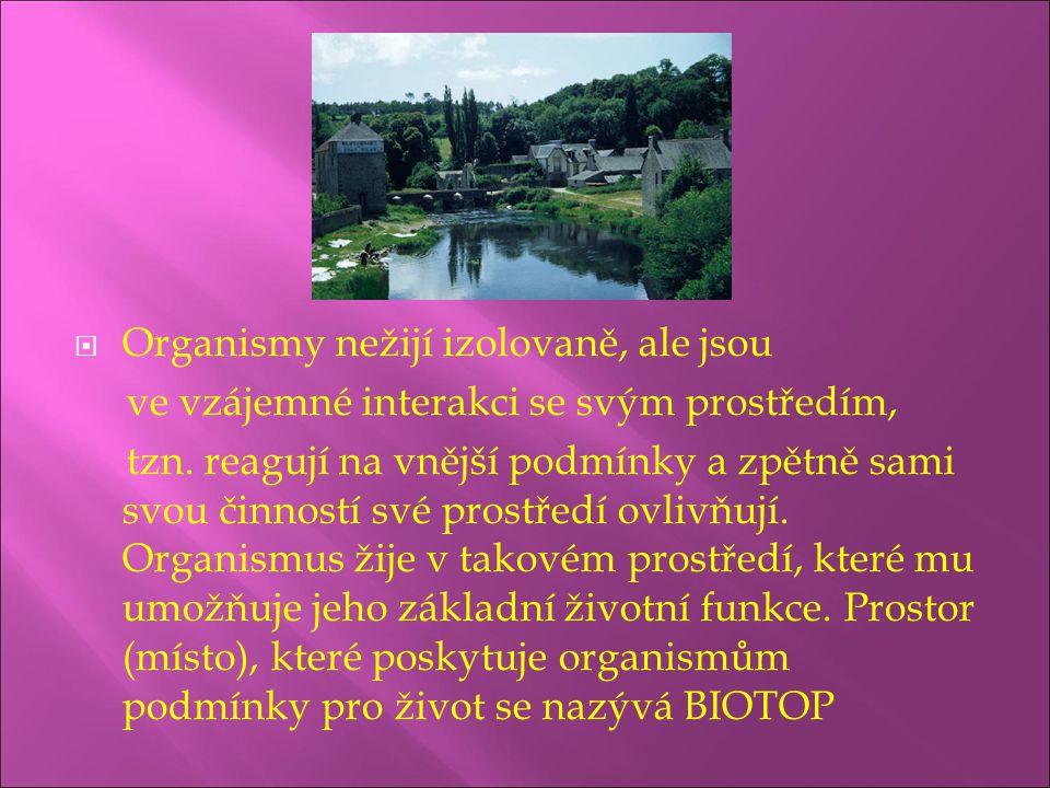  faktory biotické (životné)  faktory biotické (životné) – působení organismů na sebe navzájem včetně potravních vztahů a působení člověka, jejich působení může být přímé (např.