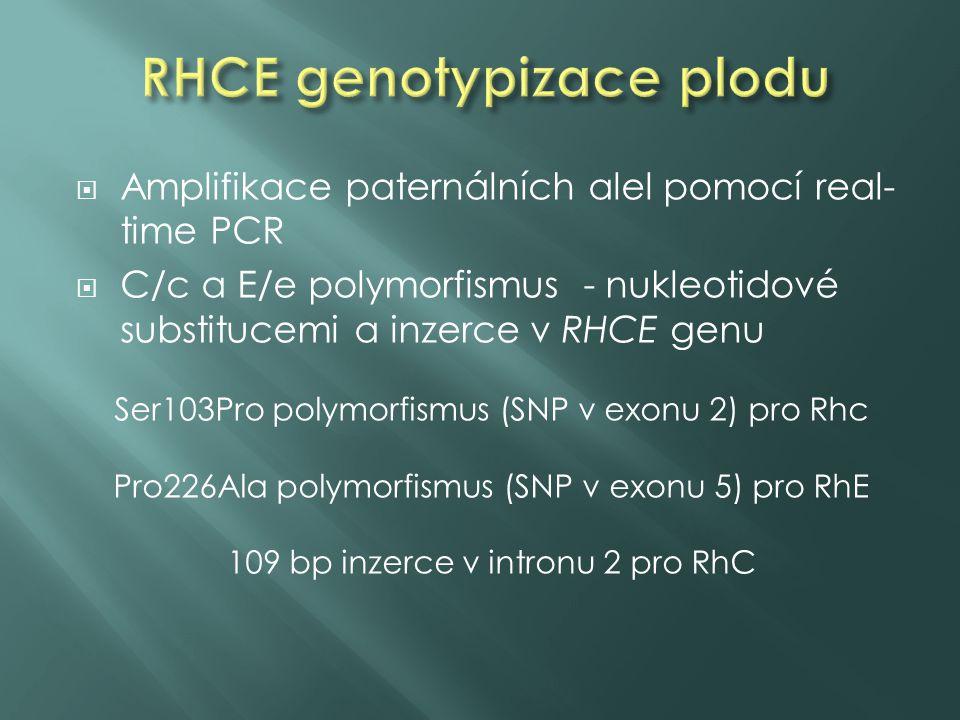 exon 2 (Rhc) intron 2 (RhC) exon 5 (RhE/Rhe)