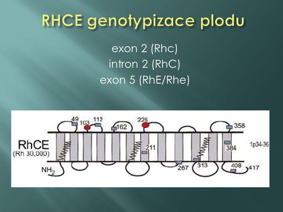  100 % specificita a 100 % senzitivita u detekce RHD exon 7 a exon 10, RHCE (C alela)  100 % specificita a 95 % senzitivita u RHCE (c alela a E alela) genotypizace (SNP), někdy problém - většina DNA je mateřského původu  RhcCE negativní plody u aloimunizovaných těhotenství nejsou ohroženy HON, u pozitivních plodů včasná informace pro klinika