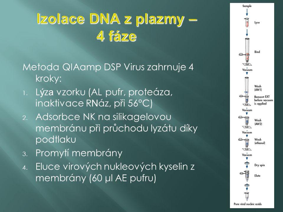 Reakční směs: dNTPs, PCR pufr s Mg2+, polymeráza, primery, voda