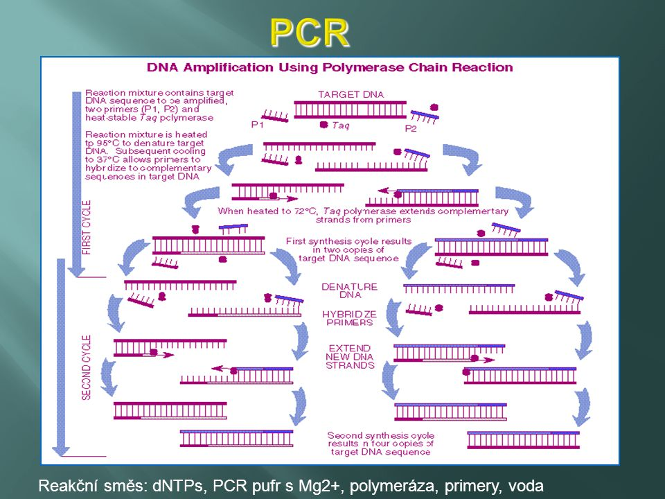 http://www.onkologickecentrum.cz/downloads/vysetreni/laborator-metody.pdf