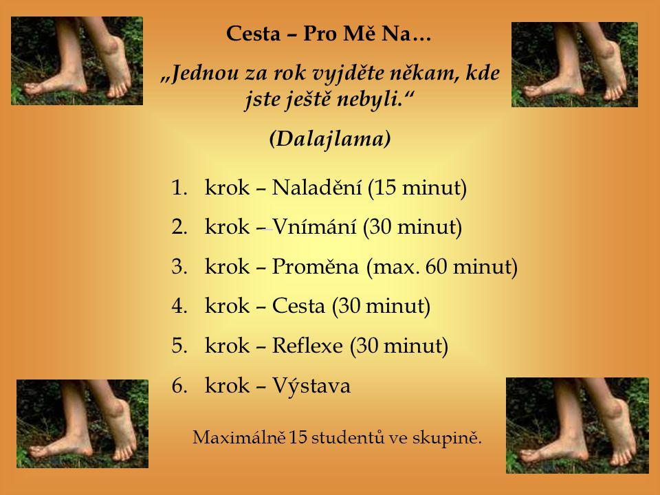 1.krok – Naladění (15 minut) 2.krok – Vnímání (30 minut) 3.krok – Proměna (max.