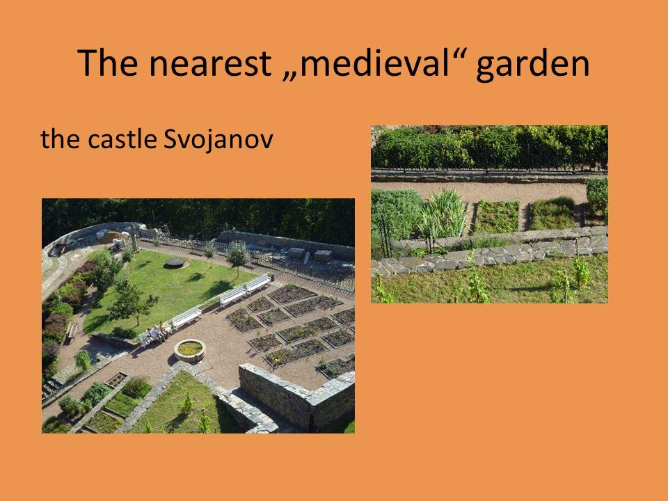 Úkoly!!.1) Která rostlina má ve středověku velký symbolický význam.