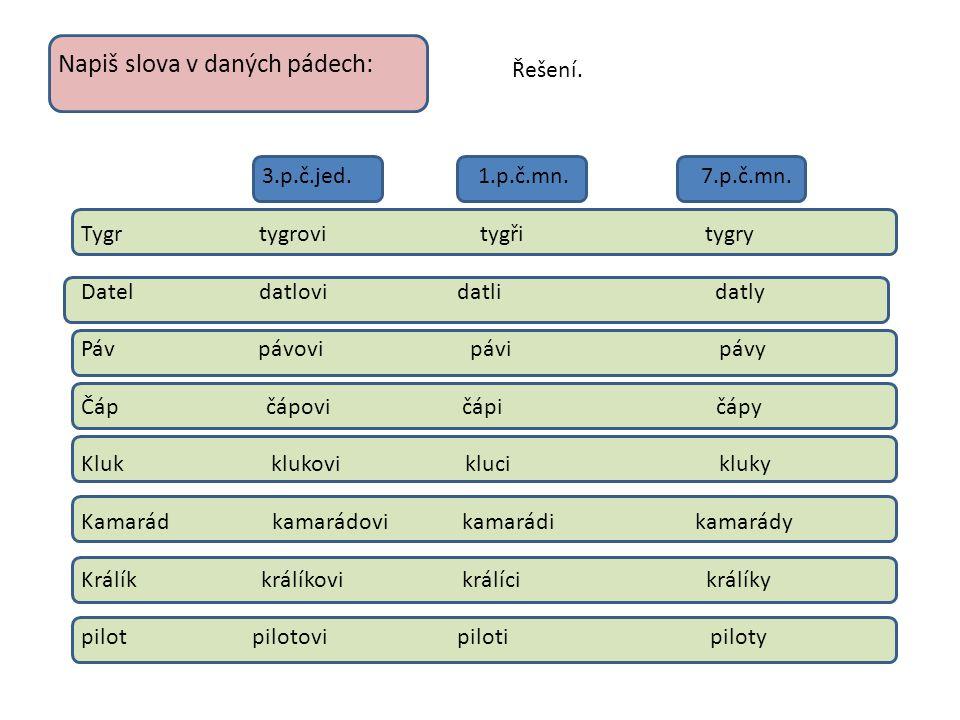Ve větách doplň vynechaná i-í/y-ý a do závorky vepiš vzor v daném pádě Nad polem létali divocí holubi( páni ).