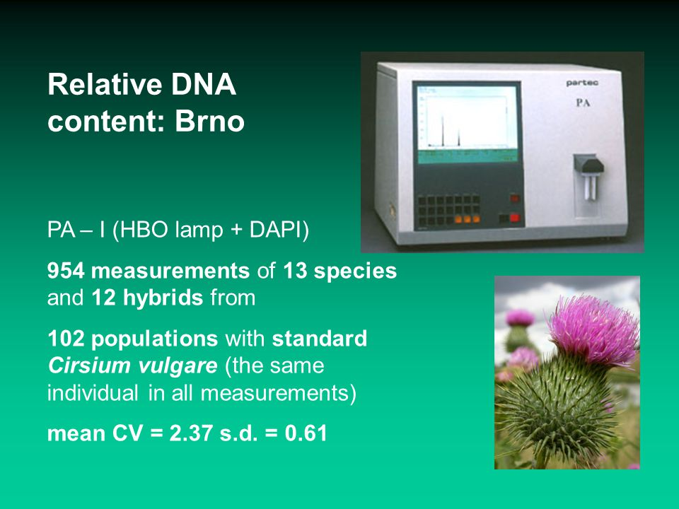 Prague Absolute DNA content & AT frequency: Brno + Praha Brno PA – I (HBO lamp + DAPI) 108 measurements of 12 species (=12x3 individuals) mean CV stand.