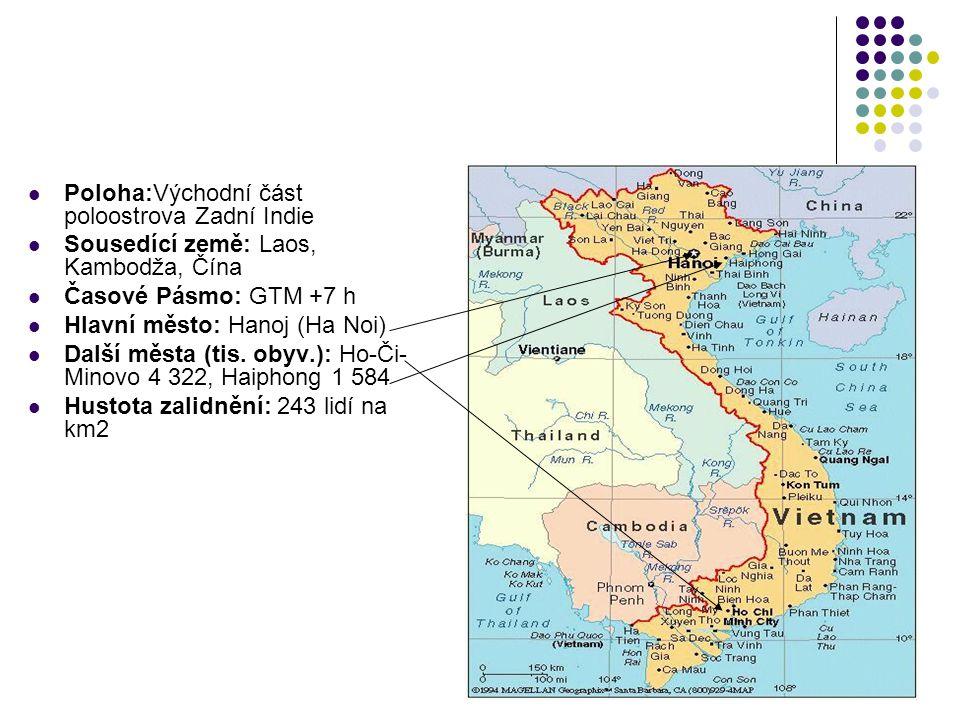 Využití plochy: 17 % orná půda, 1 % pastviny, 30 % lesy, 42 % ostatní Reliéf: Nejvyšší hora: Phan si Pan (3.142 m) nejnižší bod - Jihočínské moře (0 m) Vodstvo: Nejdelší řeka: Rudá řeka (v zemi 450 km),Mekong (v zemi 260 km) Klima: tropický pás Délka hranic: 4639 km