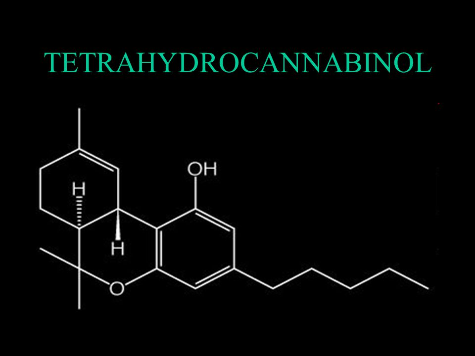 Osud látky v organismu THC se ukládá v tuku a váže se na bílkoviny (95%) –Biotransformace se děje oxidací na farmakologicky aktivní sloučeniny –výsledkem je inaktivní metabolit, vylučuje se převážně stolicí – 70 % dávky vyloučí během 3dnů, 40 % stolicí a 30 % močí –Zbývající THC je akumulován v tukových tkáních a pomalu se uvolňuje po řadu dní až týdnů.