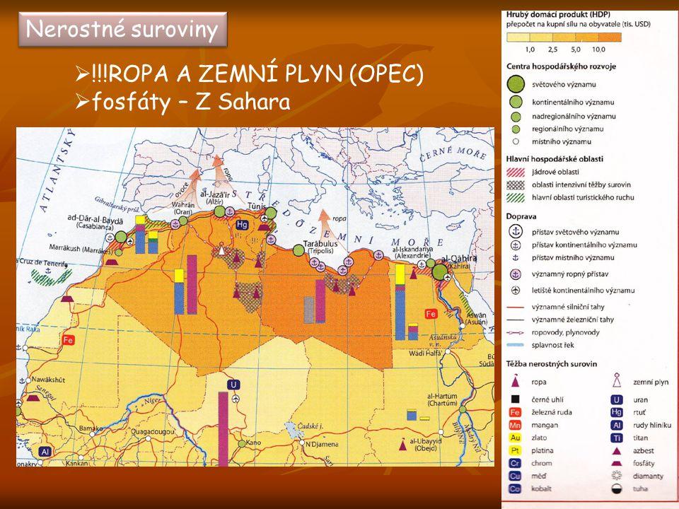 Zemědělství  Chov ovcí a koz(v horách)  Chov velbloudů(v poušti)  Rostlinná výroba – povodí Nilu – zavlažování!!.
