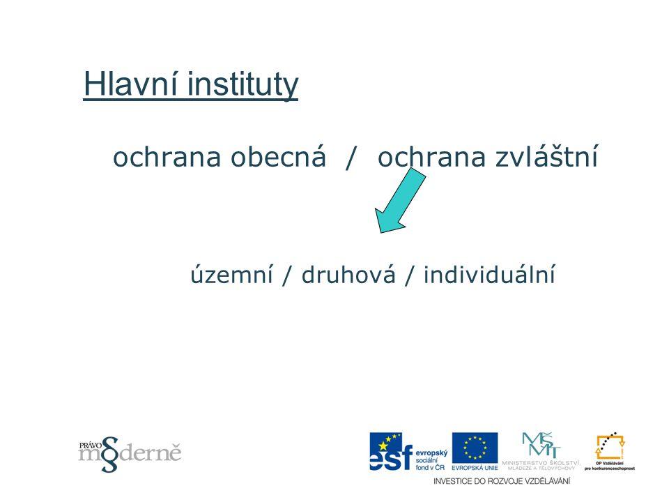 Přehled právní úpravy  mezinárodní úmluvy (přehled viz např.