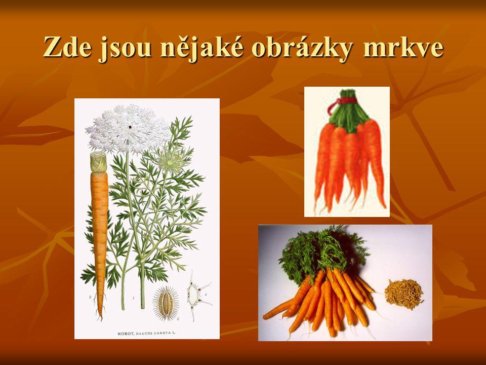 Jak lze připravit mrkev  Mrkev chutná skvěle syrová v různých salátech i tepelně upravená v polévkách nebo hlavních jídlech.
