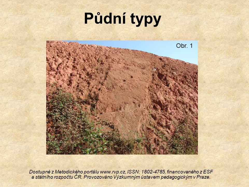 Vysvětlení a rozdělení Půdní typy:Půdní typy: –Jsou rozděleny dle půdního profilu.