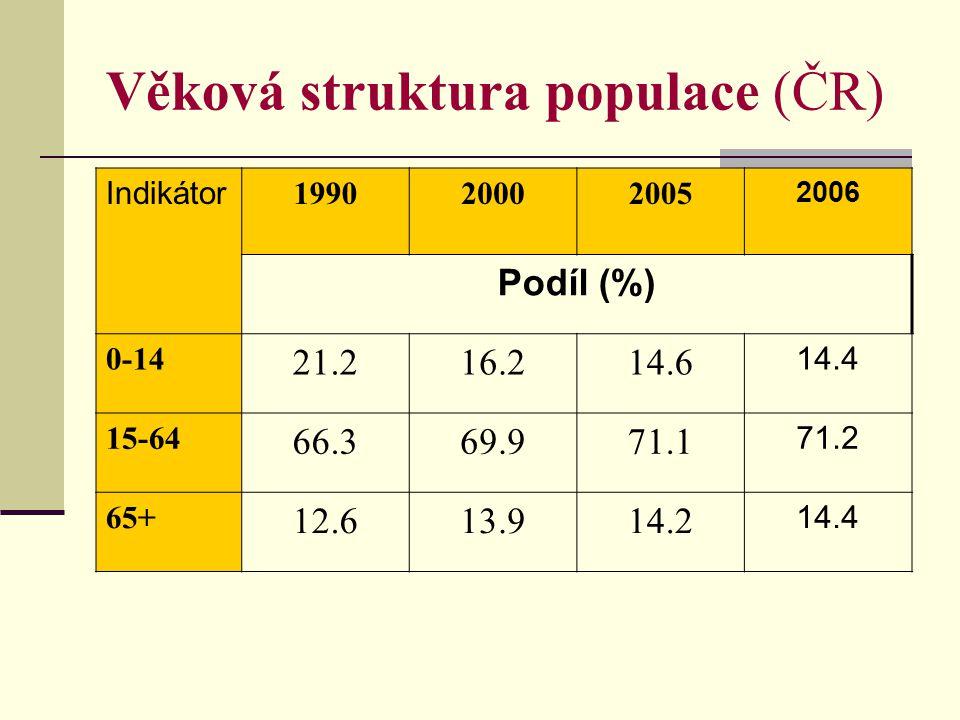 Věková struktura populace (ČR) Indikátor 1990199520002005 2008 Syntetické indikátory Index stáří 1/ 59.472.585.597.0 105.1 Index závislosti 2/ 50.946.343.040.6 40.9 Průměr.