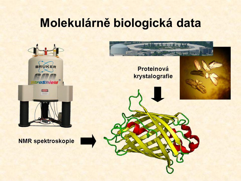 Molekulárně biologická data Výkonné technologie: Automatické sekvencování MALDI-TOF NMR spektroskopie Proteinová krystalografie Výrazný nárůst množství biologických dat.