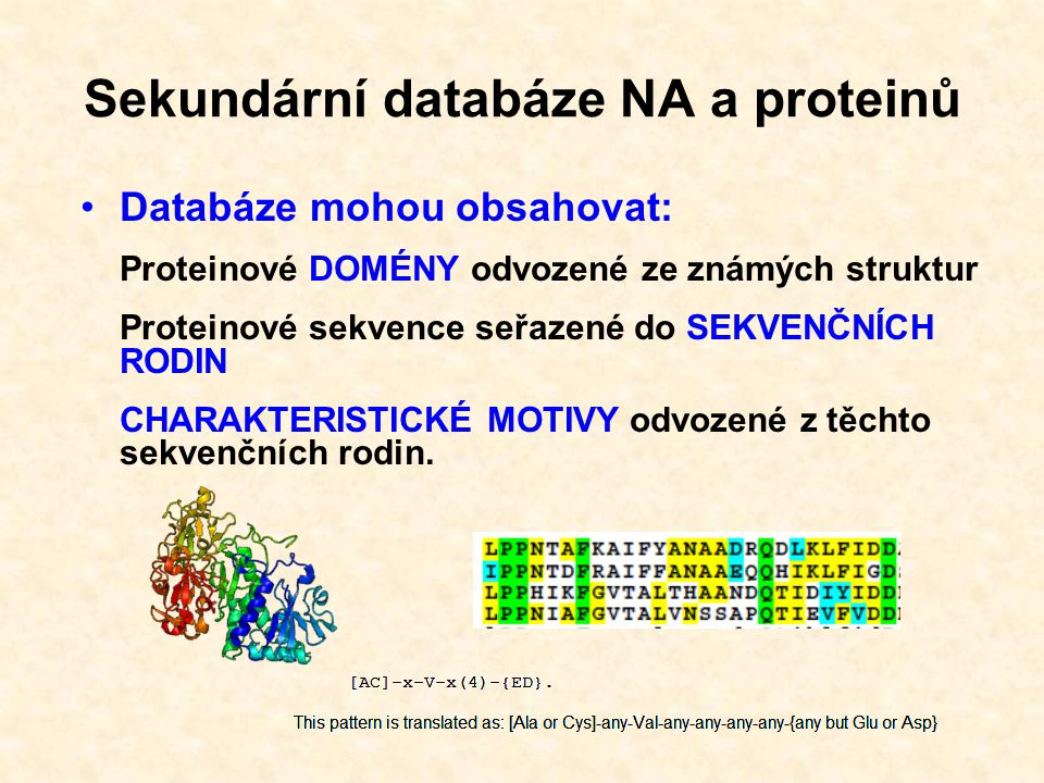 Sekundární proteinové databáze: PROSITE, Pfam, PRINTS, ProDom, SMART, TIGRFAMS V současné době sdruženy do integrované klasifikační databáze proteinů InterPro http://www.ebi.ac.uk/InterProscan/ Sekundární databáze NA a proteinů