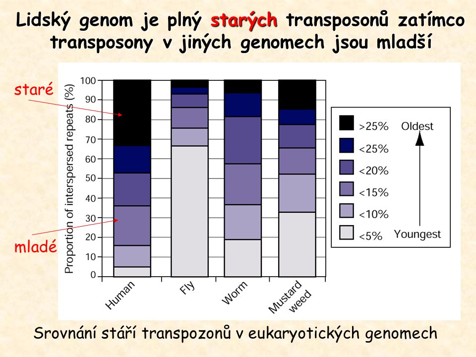 """Without transposable elements we would not be here and the living world would probably look very different from the one we know. - Susan Wessler ""Retrotransposons cannot be entirely selfish because host genome and scientists can use them for their own benefit. :-) Jeffrey Bennetzen"