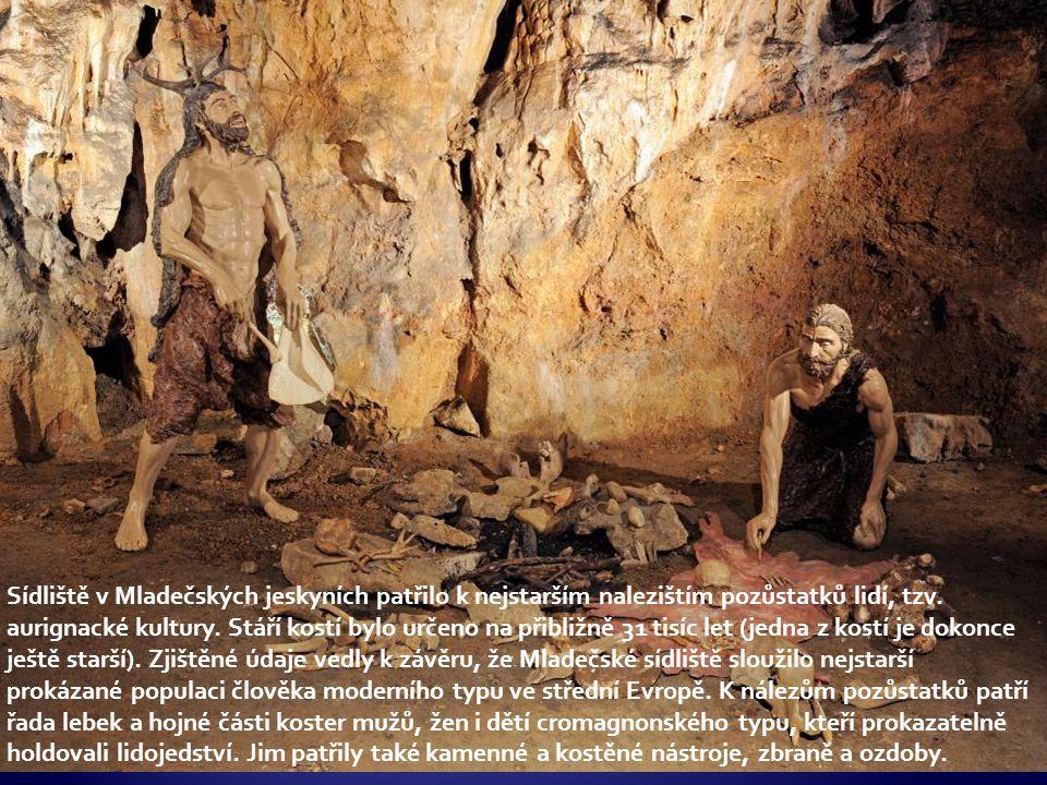  Antropologie  věda o člověku jako živočišném druhu  studuje kosterní pozůstatky  Archeologie  vývoj lidské civilizace (kultury)  studuje doklady kulturního rozvoje