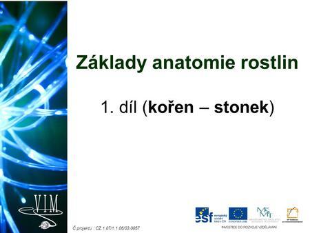 Kořen  Spolu se stonkem a listy tvoří vegetativní rostlinné orgány  Nižší  rostliny   ozn. rhizoidy e81719d719