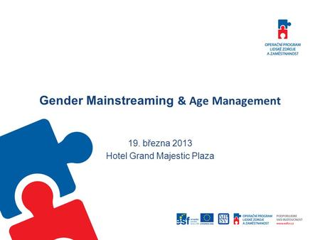 Gender Mainstreaming & Age Management 19. března 2013 Hotel Grand Majestic Plaza.
