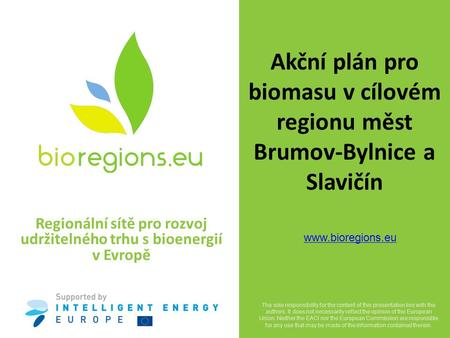 Regional Networks for the development of a Sustainable Market for Bioenergy in Europe  The sole responsibility for the content of this.