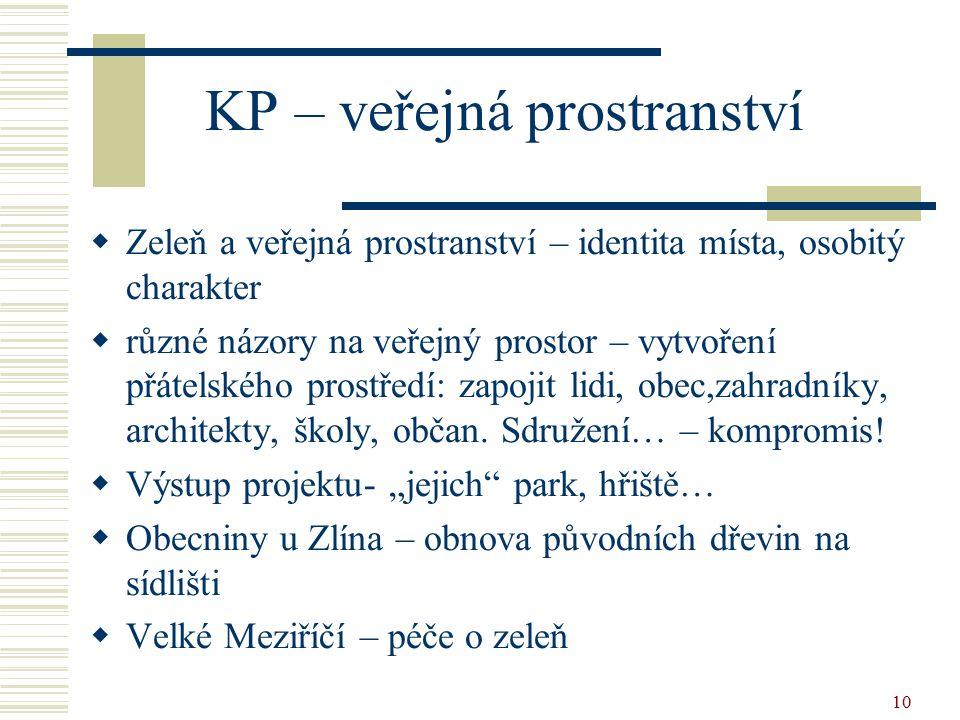11 Principy KP  Partnerství mezi všemi účastníky  Zapojení místního společenství  Hledání nových lidských a finančních zdrojů  Práce s informacemi  Průběh zpracování KP je stejně důležitý jako výsledný dokument  Zohlednění vytvořené spolupráce  Kompromis přání a stížností