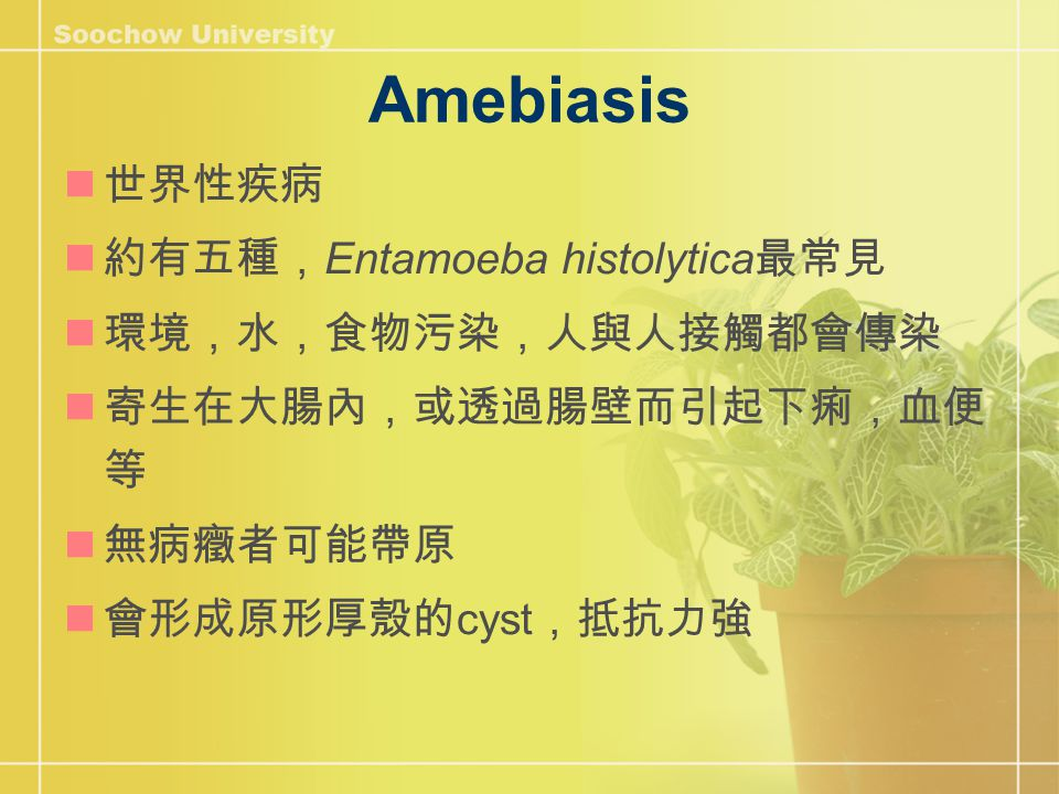 Entamoeba histolytica http://www.dpd.cdc.gov/dpdx /images/ParasiteImages/A- F/Amebiasis/Amebiasis_Life Cycle.gif