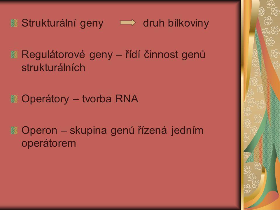 Genetika virulence patogena a rezistence hostitele GEN proti GENU každému genu rezistence odpovídá gen virulence (Flor) možno stanovit pravděpodobný počet genů rezistence a virulence + jejich kombinace (Person)