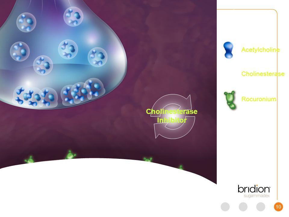 11 Scene 4 Bridion Acetylcholine Cholinesterase Rocuronium