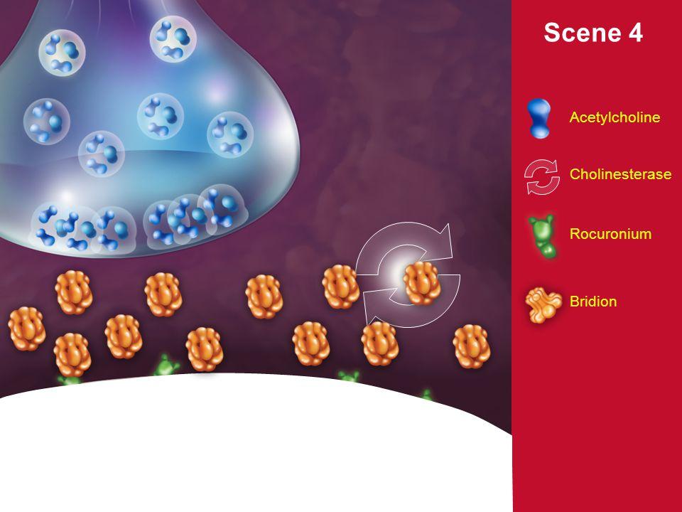 12 Srovnání reverzních (antagonizačních) látek