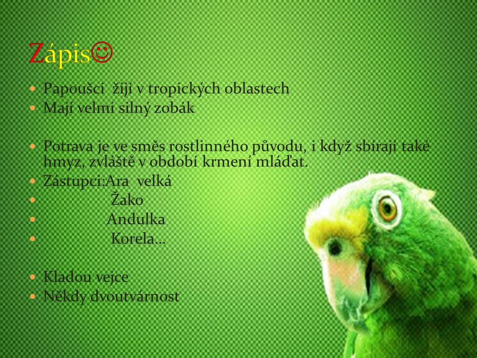 Zobák papoušků je neobyčejně silný, dokáží jím překousnout i dráty.