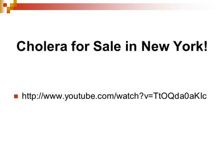 Cholera for Sale in New York!