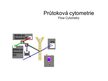 Průtoková cytometrie Flow Cytometry