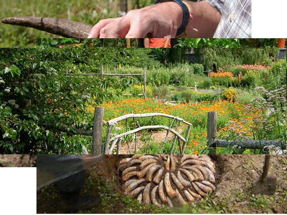Projevy alternativního zemědělství Návrat z měst na venkov Samozásobitelské hospodářství, vegetariánství Hospodaření bez chovu zvířat Biologické porozumění půdní úrodnosti a hospodaření s humusem Zajištění vysoce kvalitních zemědělských produktů Minimalizace při zpracování půdy, bezorebný způsob hospodaření Agrotechnické zásahy založené na sledování planetárního kalendáře Kalendář každoročně obnovovaný stanoví pro každý měsíc dny příhodné pro přípravu půdy, výsev, výsadbu, sklizeň apod.