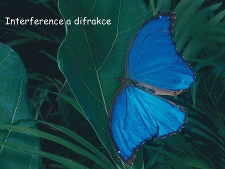 Interference a difrakce