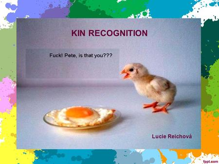 KIN RECOGNITION Lucie Reichová.