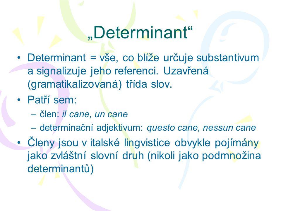 """""""Determinant Determinant = vše, co blíže určuje substantivum a signalizuje jeho referenci. Uzavřená (gramatikalizovaná) třída slov."""