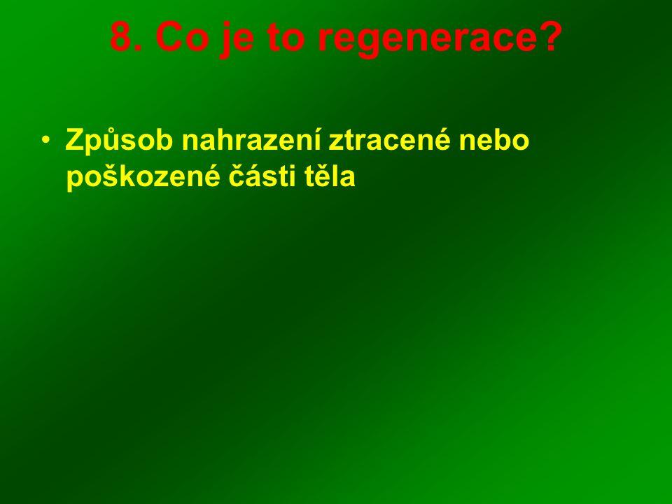 8. Co je to regenerace Způsob nahrazení ztracené nebo poškozené části těla