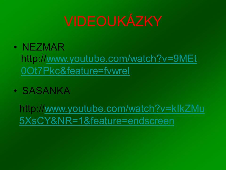 VIDEOUKÁZKY NEZMAR. SASANKA. http://www.youtube.com/watch v=9MEt0Ot7Pkc&feature=fvwrel.