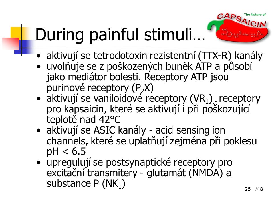 During painful stimuli…