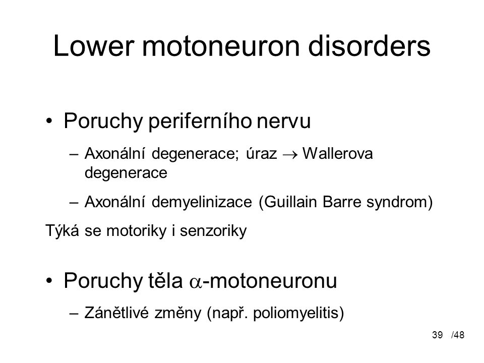 Lower motoneuron disorders