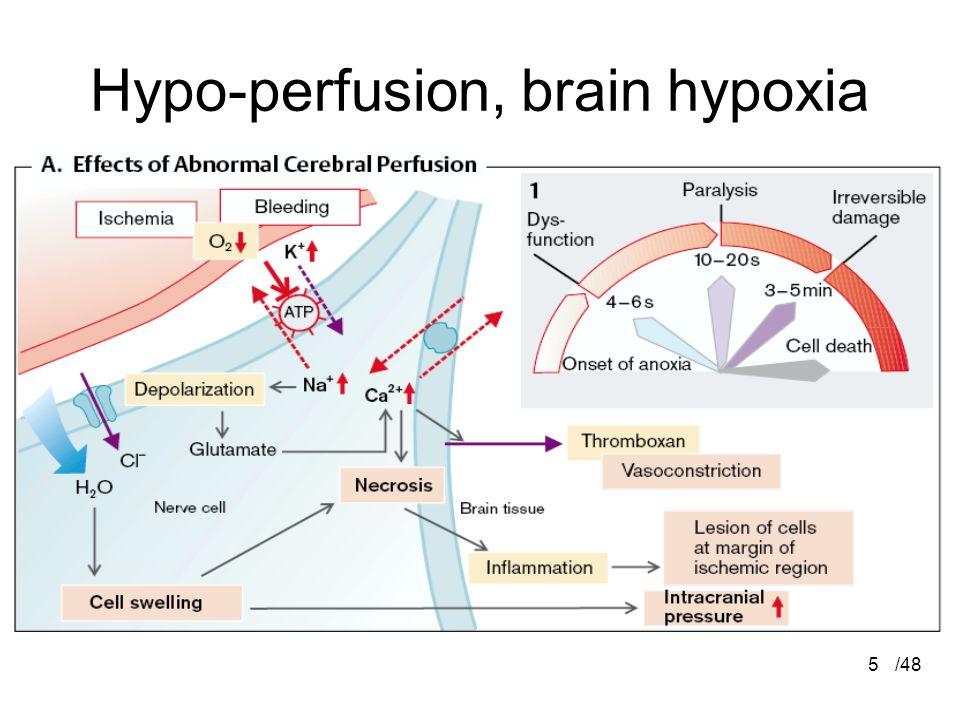 Hypo-perfusion, brain hypoxia