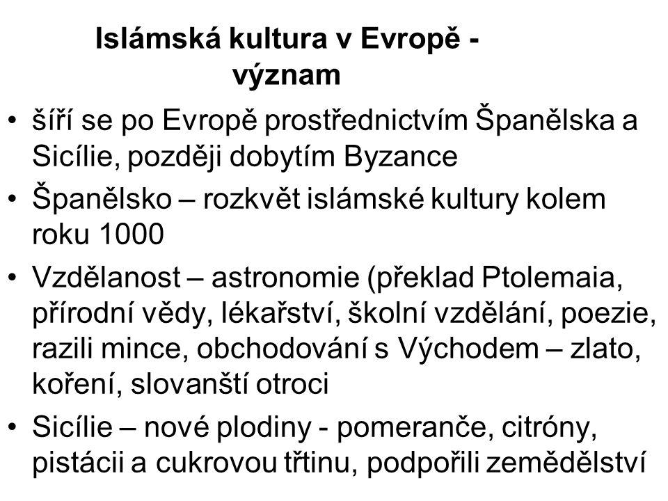Islámská kultura v Evropě - význam