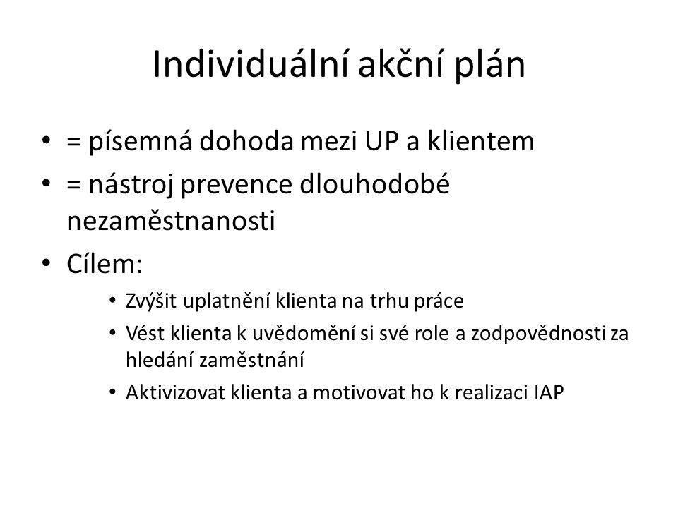Individuální akční plán