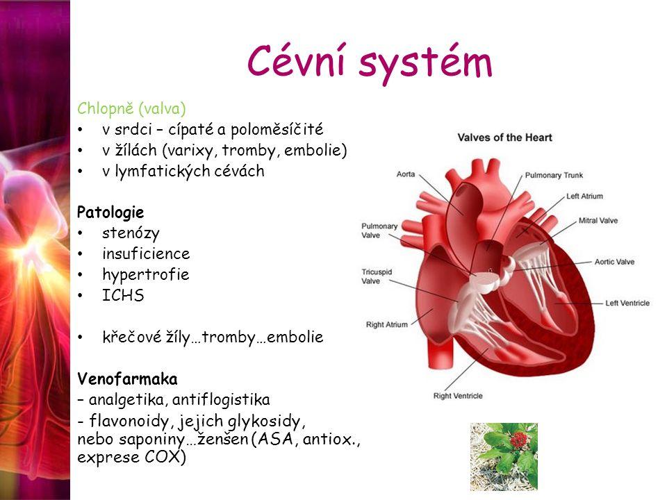 Cévní systém Chlopně (valva) v srdci – cípaté a poloměsíčité. v žílách (varixy, tromby, embolie) v lymfatických cévách.