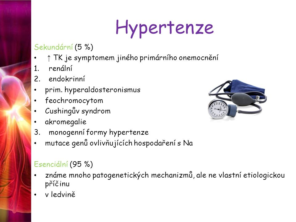 Hypertenze Sekundární (5 %)