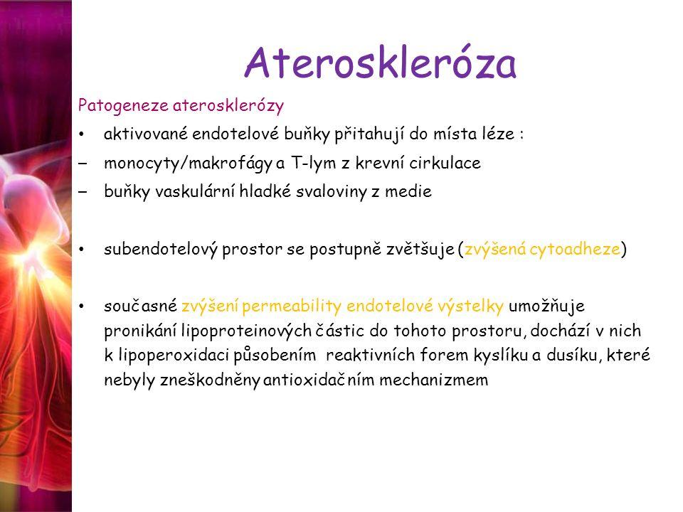 Ateroskleróza Patogeneze aterosklerózy