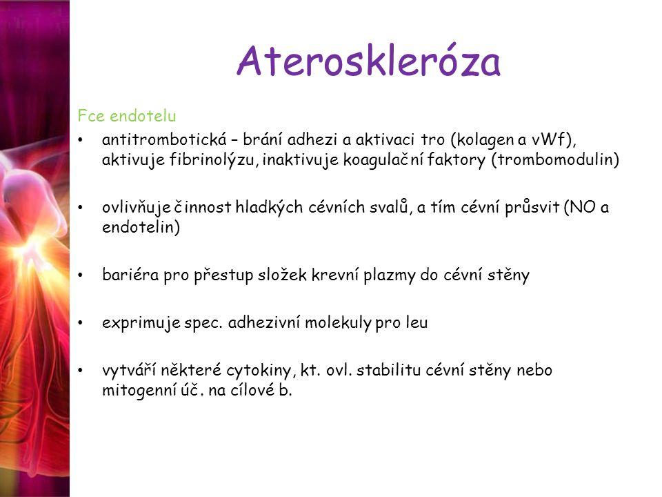 Ateroskleróza Fce endotelu