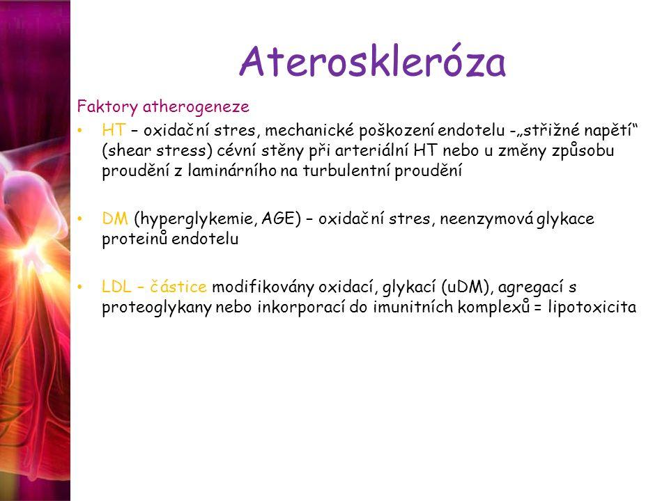 Ateroskleróza Faktory atherogeneze