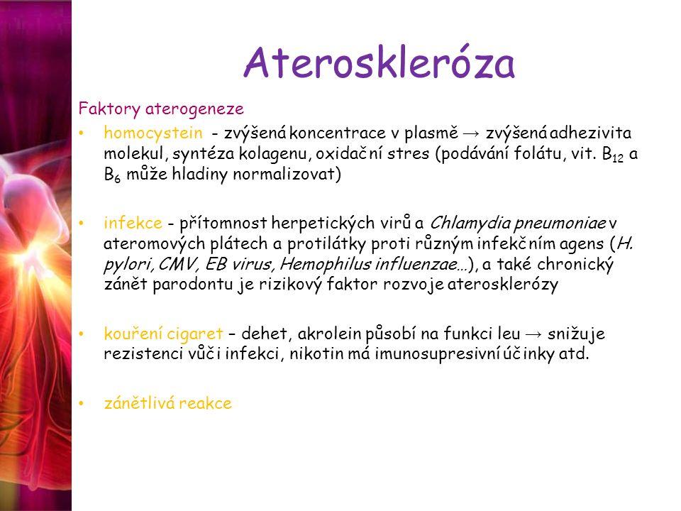 Ateroskleróza Faktory aterogeneze