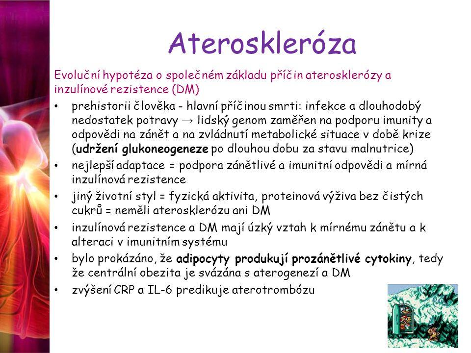 Ateroskleróza Evoluční hypotéza o společném základu příčin aterosklerózy a inzulínové rezistence (DM)